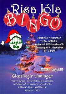 Jólab Bingó 2014